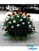 Корзина роз Красное и чёрное . Доставка по Киеву и Украине
