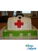 Торт на заказ Портфель доктора . Доставка по Киеву и Украине