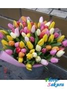 Букет тюльпанов Весенняя Радуга . Доставка по Киеву и Украине