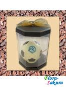 Шоколадный мяч Динамо . Доставка по Киеву и Украине