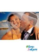 Фотосъемка свадьбы . Доставка по Киеву и Украине