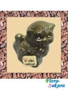 Шоколадный котенок . Доставка по Киеву и Украине