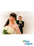 Фотосъемка свадьбы-6 . Доставка по Киеву и Украине