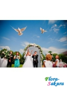 Фотосъемка свадьбы-7 . Доставка по Киеву и Украине