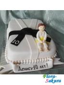 Детский торт Черный пояс . Доставка по Киеву и Украине