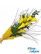 Букет желтых калл Успех . Доставка по Киеву и Украине