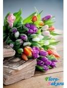 11 тюльпанов любого цвета . Доставка по Киеву и Украине