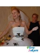 Живые бабочки на свадьбу . Доставка по Киеву и Украине