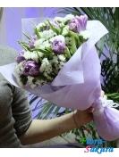 Фиолетовые тюльпаны в снегу . Доставка по Киеву и Украине
