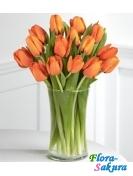 19 оранжевых тюльпанов . Доставка по Киеву и Украине