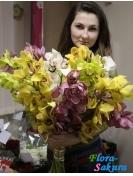 11 веток орхидей . Доставка по Киеву и Украине