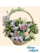 Корзина цветов Нежность прекрасна . Доставка по Киеву и Украине