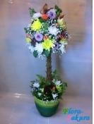 Большое дерево цветов . Доставка по Киеву и Украине