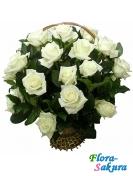 25 белых роз в корзине . Доставка по Киеву и Украине