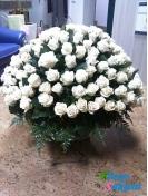 Корзина из 151 белой розы . Доставка по Киеву и Украине
