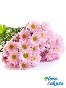 Букет розовой хризантемы . Доставка по Киеву и Украине
