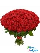 101 красная роза 50см . Доставка по Киеву и Украине
