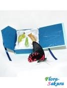 Коробочка с куколками бабочек . Доставка по Киеву и Украине