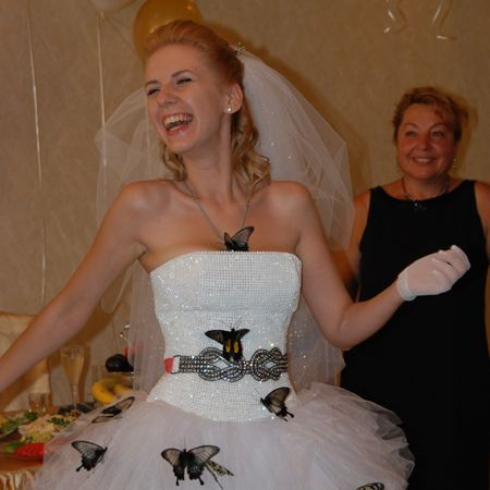 Живые бабочки на свадьбу. Доставка по Киеву и Украине
