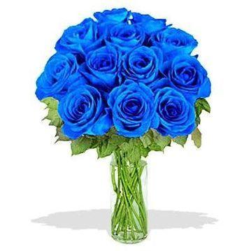 Букет синих роз. Доставка по Киеву и Украине