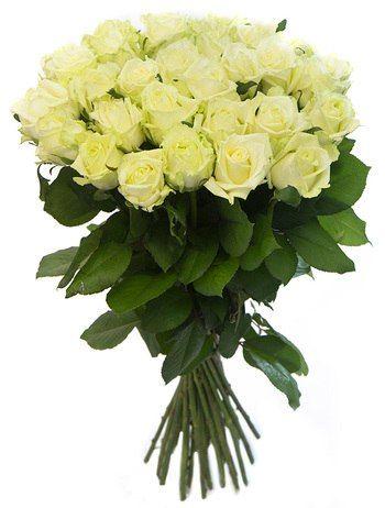 25 белых роз Мондиаль. Доставка по Киеву и Украине