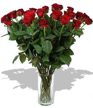 Просто розы, 19 штук. Доставка по Киеву и Украине